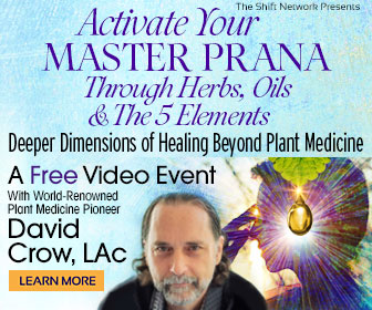 Activate Your Master Prana Through Herbs, Oils & The 5 Elements: Deeper Dimensions of Healing Beyond Plant Medicine