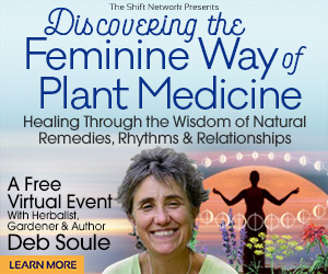 Discovering the Feminine Way of Plant Medicine: Healing Through the Wisdom of Natural Remedies, Rhythms & Relationships