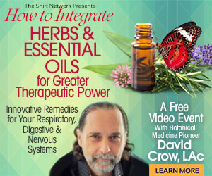 How to Integrate Herbs & Essential Oils for Greater Therapeutic Power: Innovative Remedies for Your Respiratory, Digestive & Nervous Systems