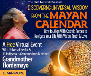 Discover Universal Wisdom From The Mayan Calendar: How to Align with Cosmic Forces to Navigate Your Life With Vision, Truth & Love