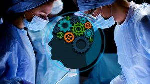 Brain Anatomy - Learn biopsychology science quickly & easily