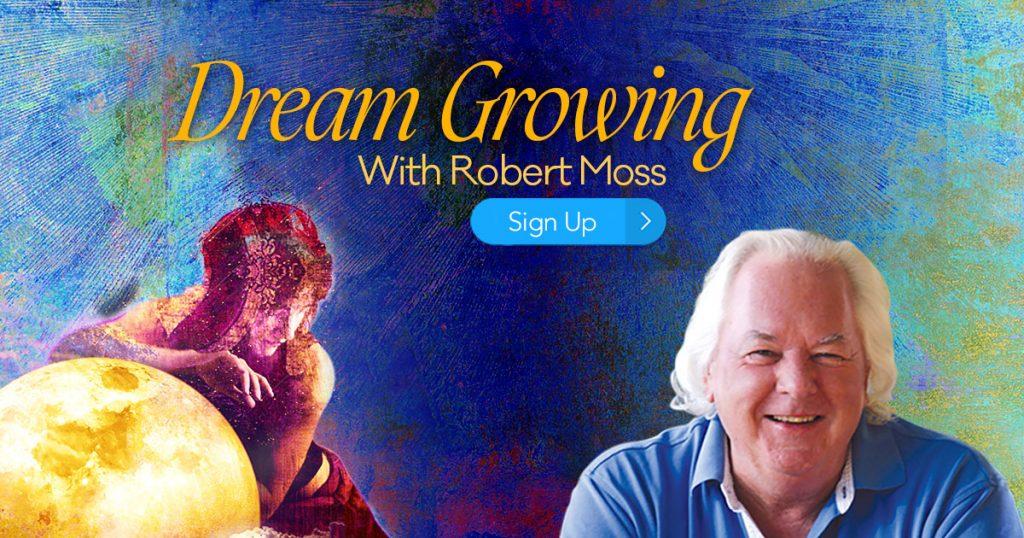 Dream Growing 9 Secrets to Unlock Imagination & Live Your Soul's Wildest Imaginings