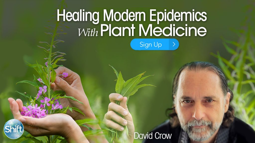 Healing Modern Epidemics with Plant Medicine: How to Avoid Pop Medicine & Trendy Diagnoses to Find Real Solutions