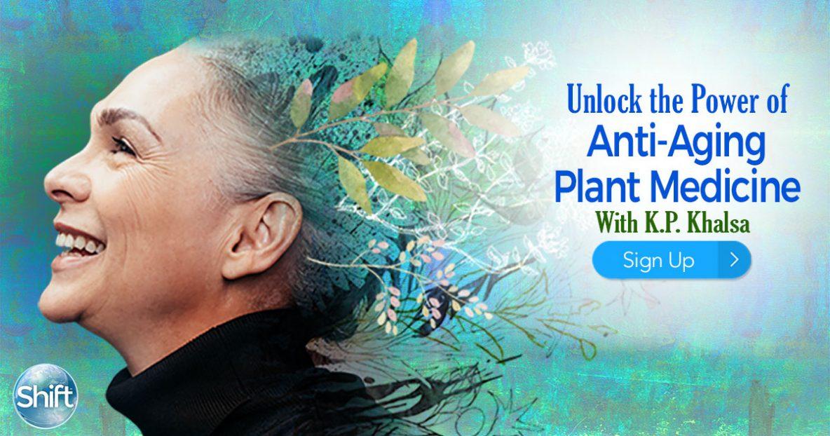 Anti-Aging Plant Medicine 4 Herbs to Boost Brain Health, Improve Memory & Increase Vitality