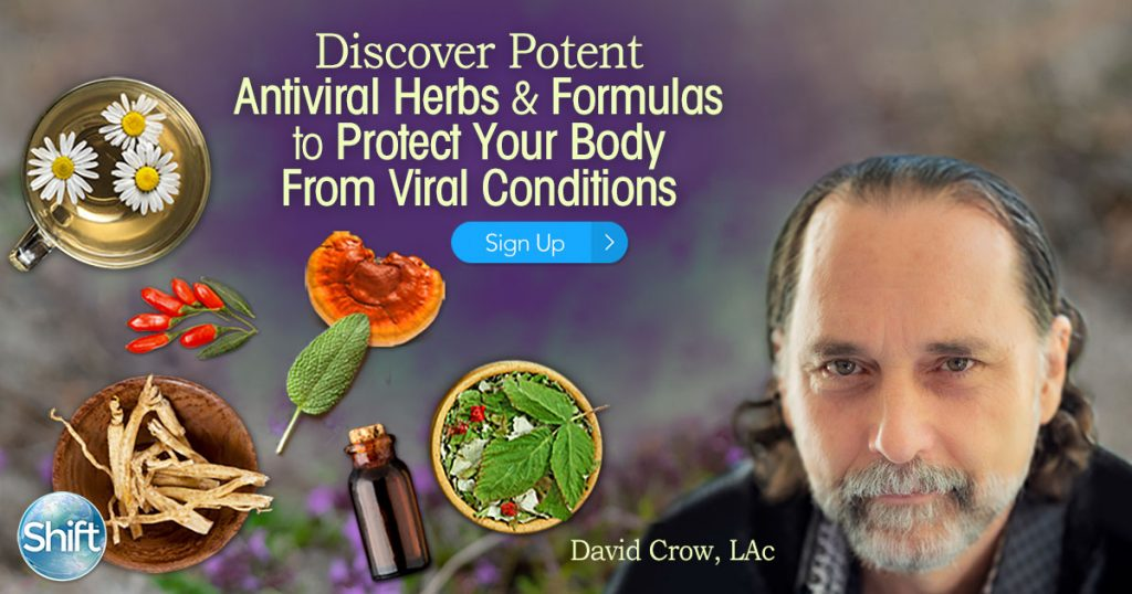 Discover Potent Antiviral Herbs & Formulas to Protect Your Body From Viral Conditions with David Crow