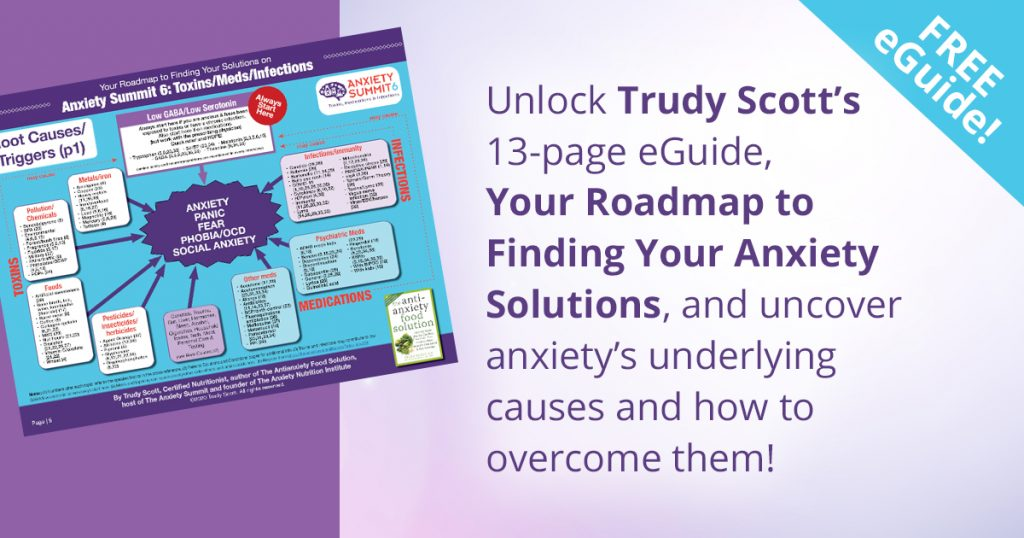 Download Free Roadmap to Finding Your Anxiety Solutions eGuide Gift