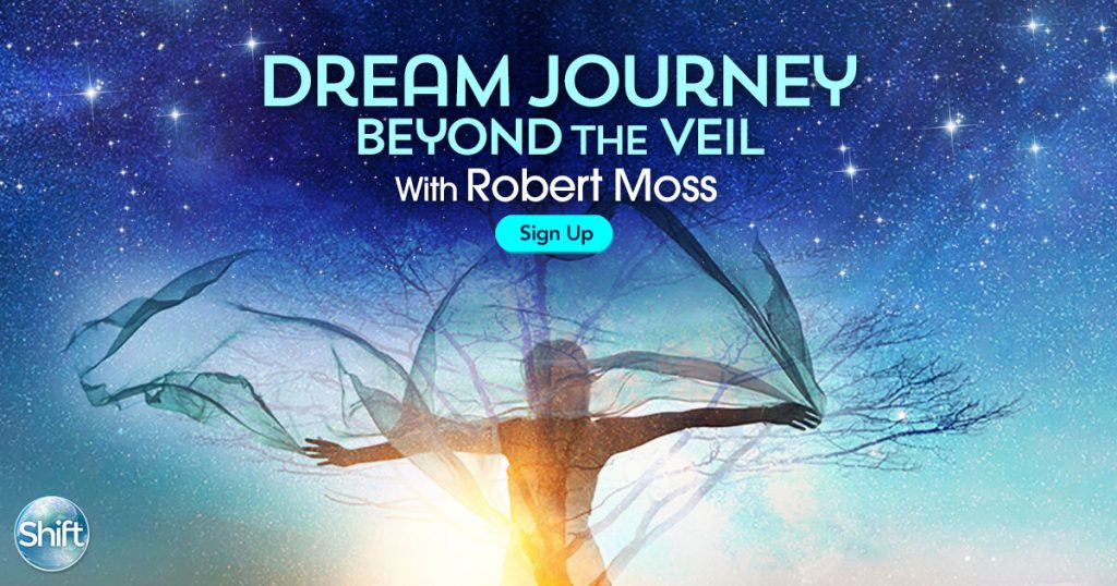 Join us for Dream Journey Beyond the Veil: Shamanic Dreaming Practices to Connect With Loved Ones & Glimpse Your Future on the Other Side