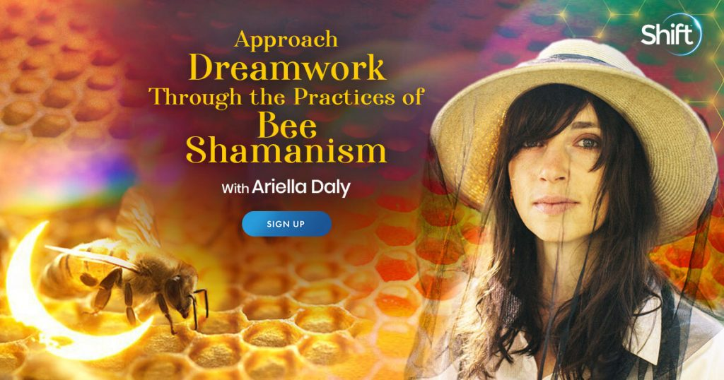 Welcome the honeybee as your guide to develop a deeper relationship with yourself