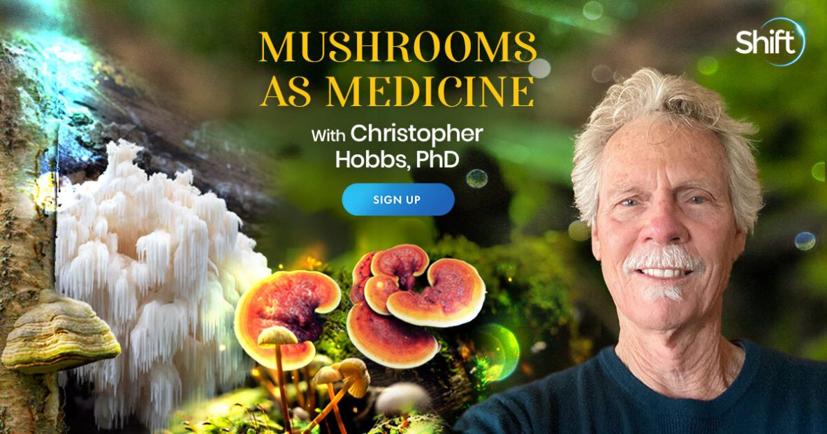 Discover Mushrooms' Nutritional & Medicinal Superpowers for Body, Mind & Spirit