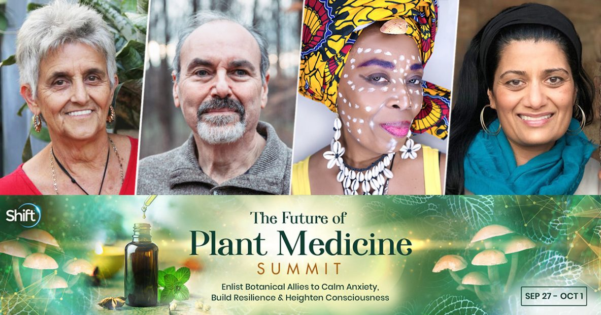 Explore myriad rituals, passed down through generations, that connect you to your plant allies through a deep journey of the soul and the subconscious