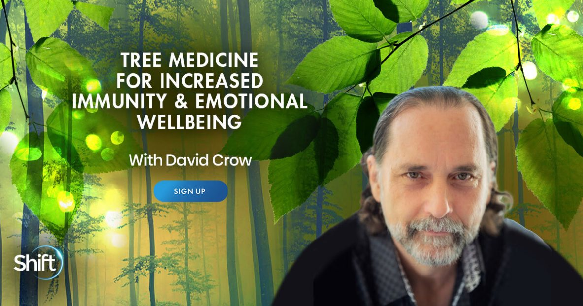Learn Natural Botanical Herbal Tree Medicine for Increased Immunity & Emotional Wellbeing with David Crow